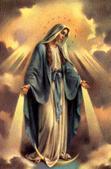 #365javecMarie